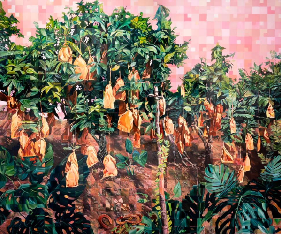 Mangueiras com barranco em Ibiúna