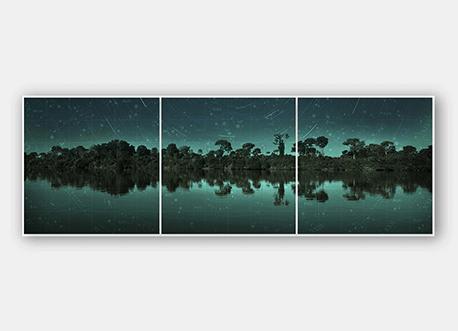 Xingu Áries